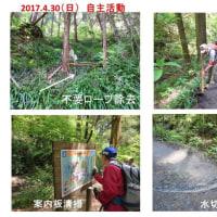 2017.4.30(日) 自主活動/山内  【新緑の高尾山  6号路一方通行案内】