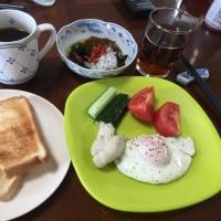 朝飯。ヘルシー食。いただきます。