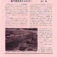 「枝下用水日記vol.20‐矢作川の流れのほとりから‐」を発行しました