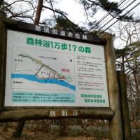 那須の散歩コース