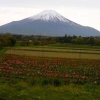 やっぱり富士山はすごいなぁ