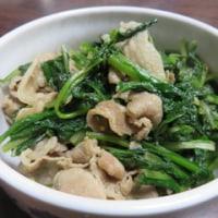 長禅寺菜の種は、まいていただけましたか?