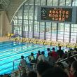 高校総体水泳