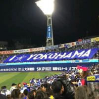 野球観戦の顛末