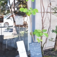 中軽井沢「ハルタ 軽井沢店 」、美味しくてオシャレなパン屋さん