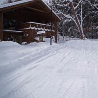 真っ白なクリスマスイブ Snowy
