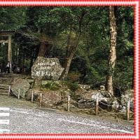 和歌山へ一泊旅行 その3
