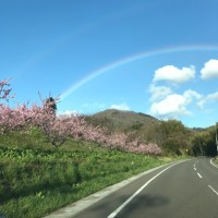 相馬 福島 ドライブ