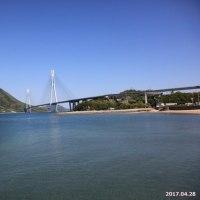 多々羅大橋とトンビ 2017.04.28