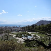 函館公園の眺めと函館公園からの眺め-春
