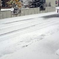 ファイターズロスだし寒いし雪降るし…………(>_<)