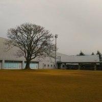 町民会館・体育館の代替施設