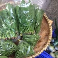 清原さんの無農薬野菜入荷しました。