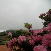 5月24日(水)のえびの高原