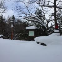 新雪地蔵峠スノーシュー!