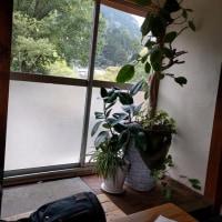 奥多摩~新宿