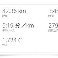 ■ 今年も勝手に42km