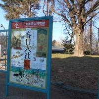 「春日大社 千年の至宝」展に行ってきました(2017.1.17~3.12)@東京国立博物館&春日大社についてイタリア語で話す
