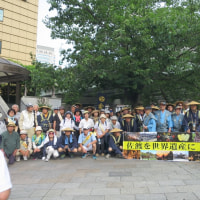 金の道ウォーク 第3区(最終区)板橋宿~日本橋まで。