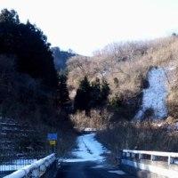 雪の林道・・・「一極集中!」 でした