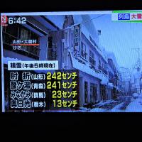 1/14 森田さんの すごい雪