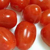 アンジュレトマト。