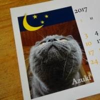 ポンちゃんままさん手作りの小豆カレンダー