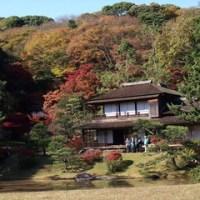 古建築公開と紅葉の三渓園を訪ねる