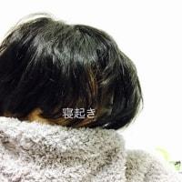 髪の毛も断捨離