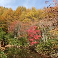 恵那山・野熊の池