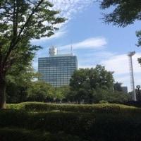 夏空の「代々木公園」