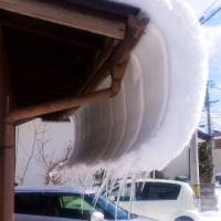 旅に出た除雪スコップ