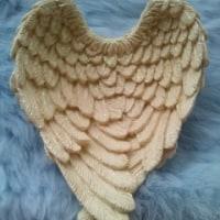 天使の羽のトレー