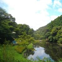 久々の晴れ間に鎌倉中央公園を散策する