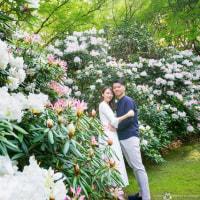 「君の名は」っぽく、「花の名は」みたいな雰囲気 @前撮りロケーションフォト Pre-wedding photo session in Fukuoka Japan.
