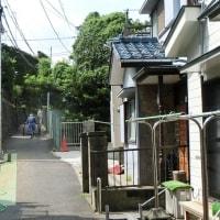 車の入らぬ細い路地 2016横浜 必塗マン
