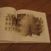 庭のマロニエ―アンネ・フランクを見つめた木―