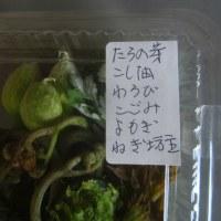 「天ぷらセット」