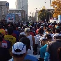 11月13日(日)のレース結果