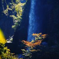晩秋の白山山麓 「綿ヶ滝」と畑の冬支度