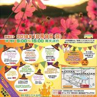 コスモスフェスティバルin道の駅「笠岡ベイファーム」