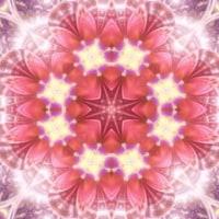 無料動画素材14「花モチーフと光」