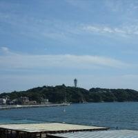「きずな(イルカ・アシカショー)」/えのすい(2017初夏)