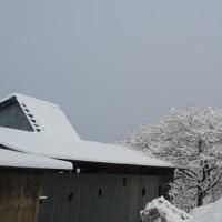 重い雪が降ったけど(^▽^)V