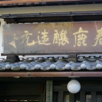 奈良で春鹿の新酒を試飲する
