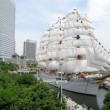 帆船日本丸2017:総帆展帆と満船飾