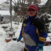 大雪につき、不要不急の外出。