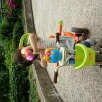 三輪車事故😅