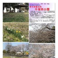 埼玉-583 千塚西公園 幸手市香日向