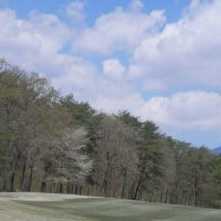 人生を楽しめ 爺さん 山へ芝刈りに